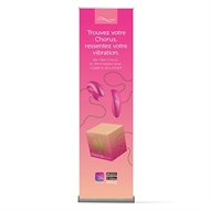 Picture of We-Vibe Chorus  Roll-up Banner  FR