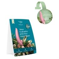 Image de Premium Eco Merch Kit French